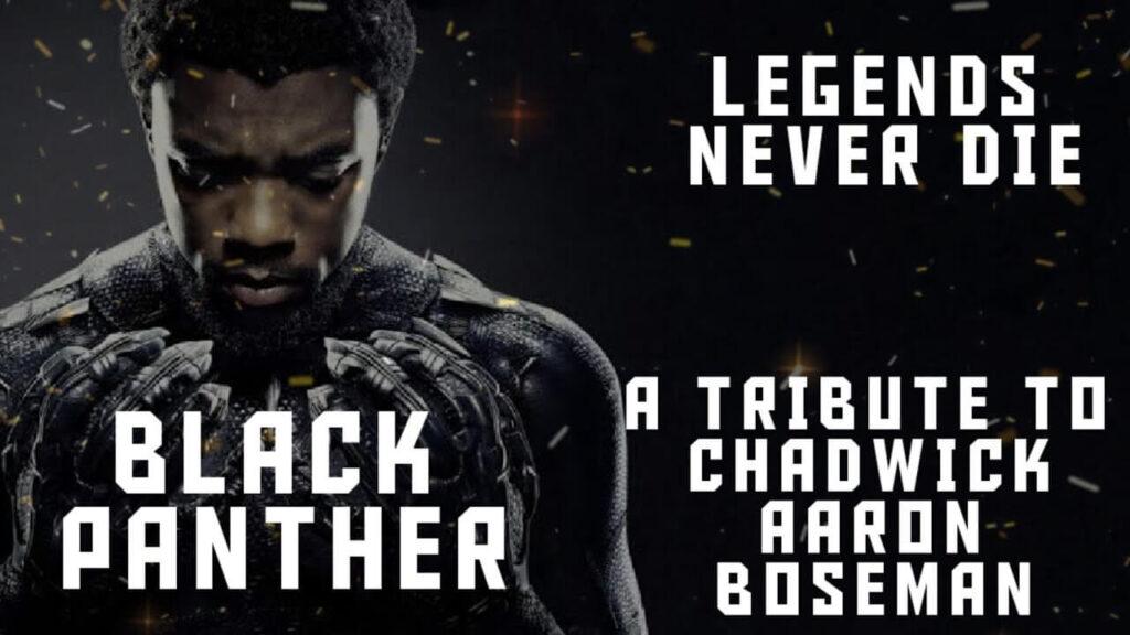 The sad demise of Black Panther: Wakanda Forever